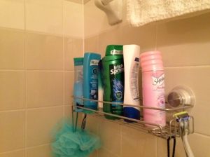 shower organization